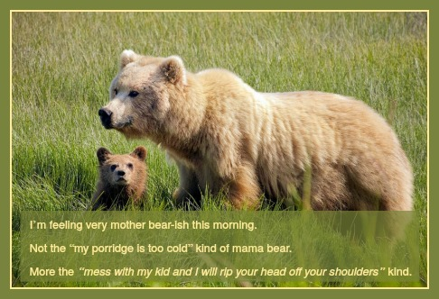 "I'm feeling very mother bear-ish this morning. Not the ""my porridge is too cold"" (sounds disgusting to me) kind of mama bear. More the ""mess with my kid and I will rip your head off your shoulders"" kind. DearKidLoveMom.com"