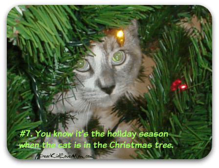 #7. You know it's the holiday season when the cat is in the Christmas Tree. DearKidLoveMom.com