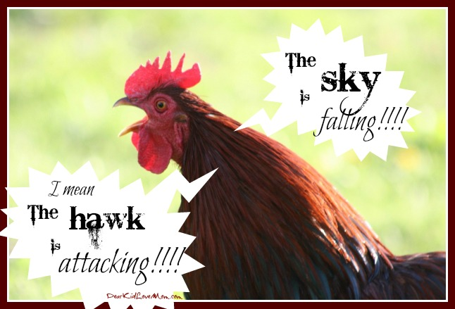 A hawk in the neighborhood ate one of the chickens. DearKidLoveMom.com