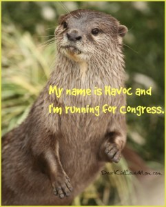 Facts About River Otters & Why They're Like Congress DearKidLoveMom.com