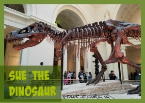 Sue the Dinosaur at the Field Museum. DearKidLoveMom.com
