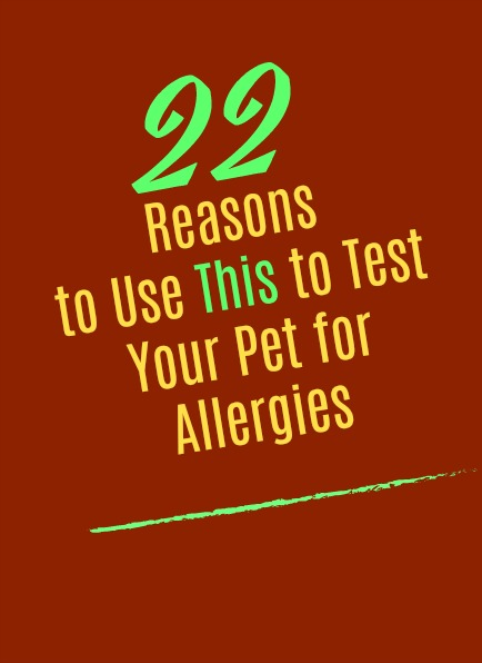 Twenty-Two Reasons to Use This to Test Your Pet for Allergies