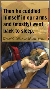Then he cuddled himself in our arms and (mostly) went back to sleep. DearKidLoveMom.com