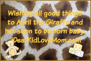 Wishing all good things to April the Giraffe and her soon to be born baby. DearKidLoveMom.com
