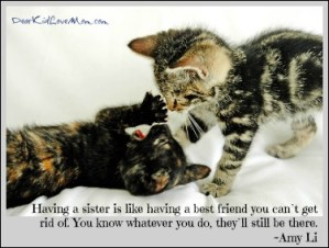 Having a sister is like having a best friend you can't get rid of. You know whatever you do, they'll still be there. ~Amy Li DearKidLoveMom.com