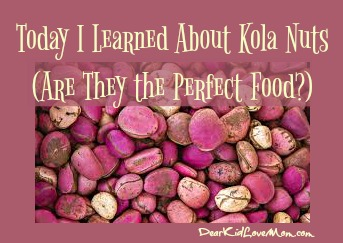 Today I Learned About Kola Nuts (Are They the Perfect Food?) DearKidLoveMom.com