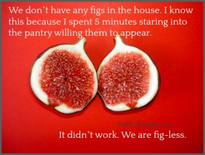 We don't have any figs in the house. I know this because I spent 5 minutes staring into the pantry willing them to appear. It didn't work. We are fig-less. DearKidLoveMom.com