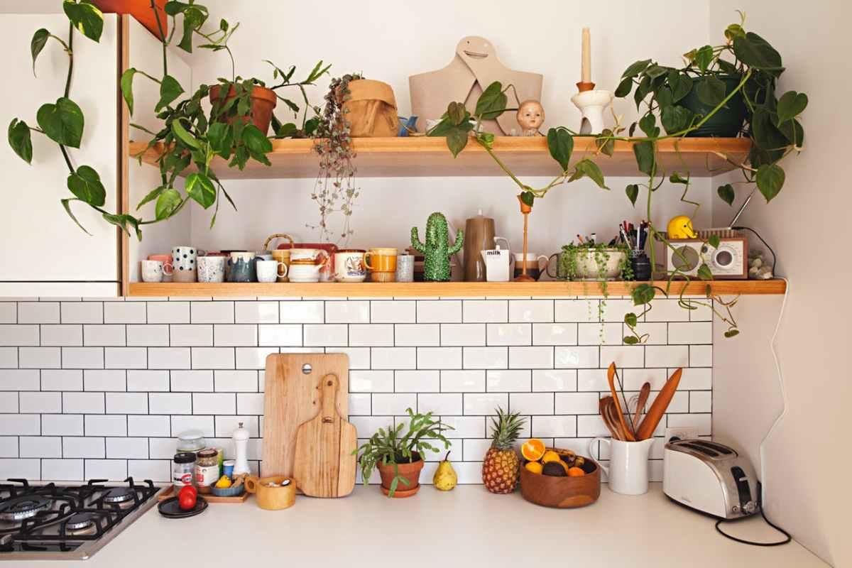 Stunning Piante Per Cucina Pictures - Orna.info - orna.info