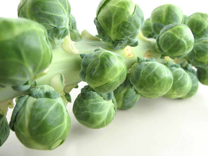 Vancouver are the ideal brussels sprouts