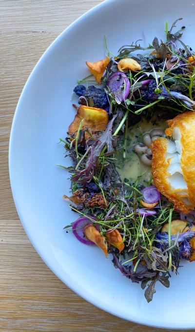 Your Next Fish Recipe: Prepare Fish Like A Chef!