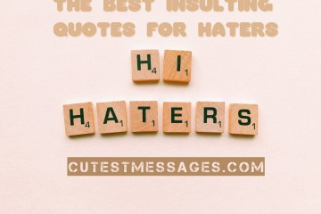 Insulting Quotes For Haters