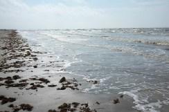 The beach at Sea Rim