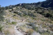 The hillside near the saddle before the climb begins again