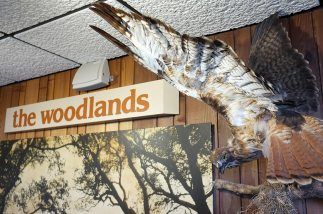 The visitors center displays