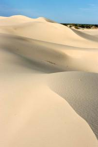 Folds of ivory sand in the early light
