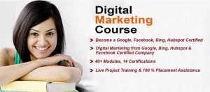 Learn Digital Marketing at Cheap Price with Proper Certifications in Short Duration of Time