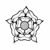 Lozzy BOnes Tudor Rose illustration