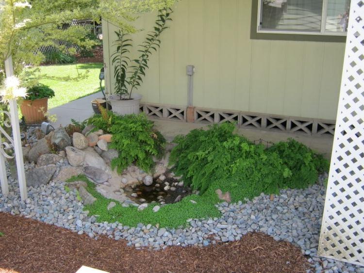 Gartengestaltung Guenstig Idee Teich Steine Bodendecker Farnen
