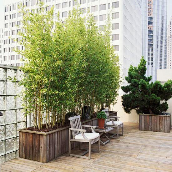 10 Ideen fr Balkon und Dachterrassegrne Oase in der