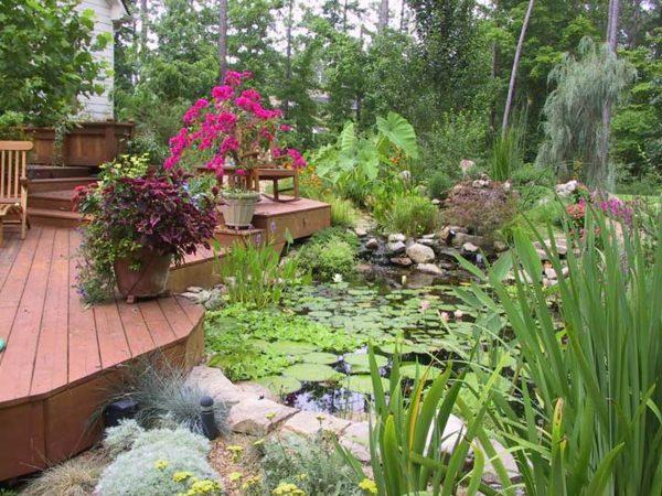 holz terrasse seerosen pflanzen garten teich » terrassenholz, Gartenarbeit