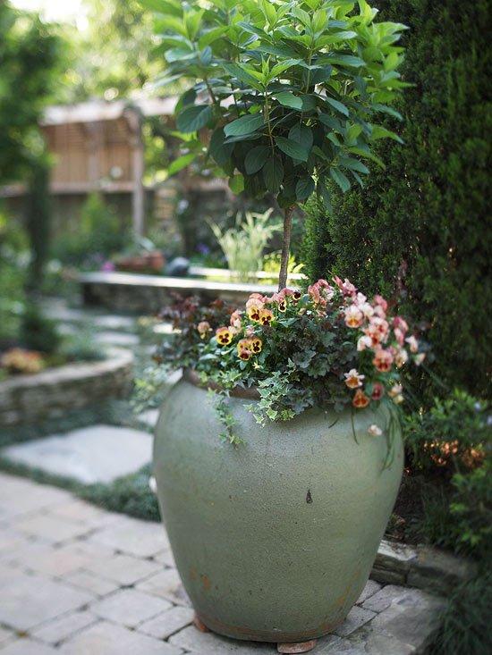 sichtschutz aus pflanzen balkon balkon sichtschutz pflanzen waldoo, Garten und erstellen