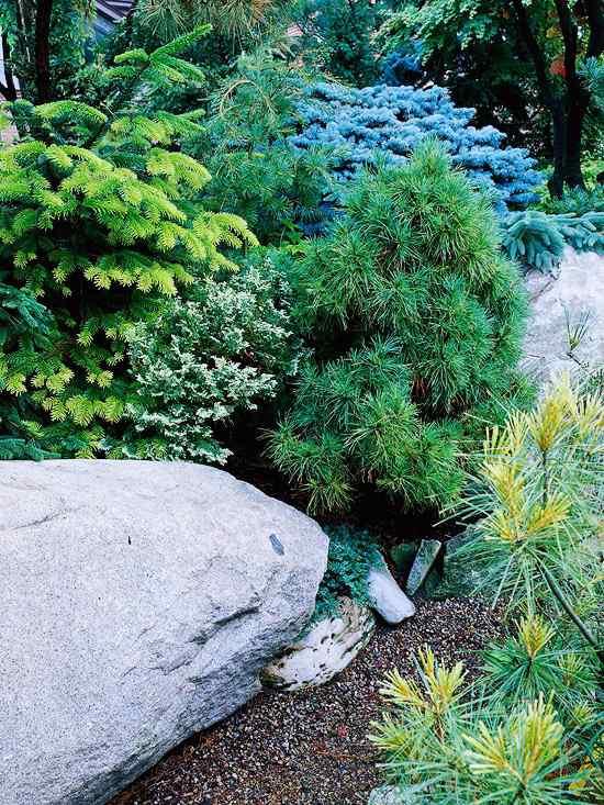 Steingarten anlegen und bepflanzen  Gestaltungsideen fr
