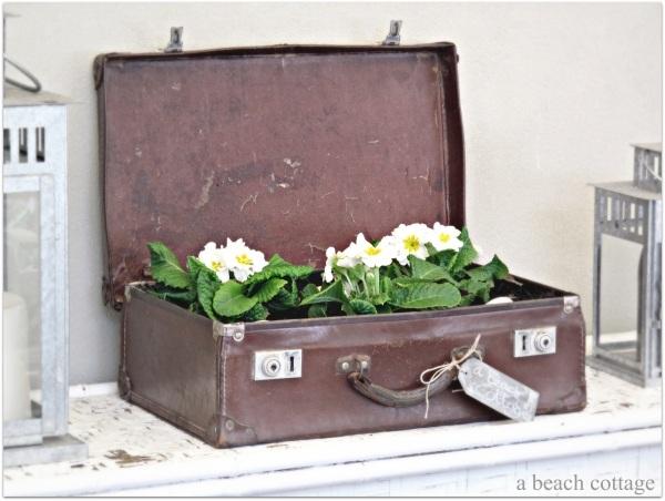 Attraktive Neugestaltung und Deko Ideen für den alten Koffer zu Hause