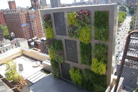 balkon sichtschutz mit vertikalem garten guenstig effektiv, Hause und garten