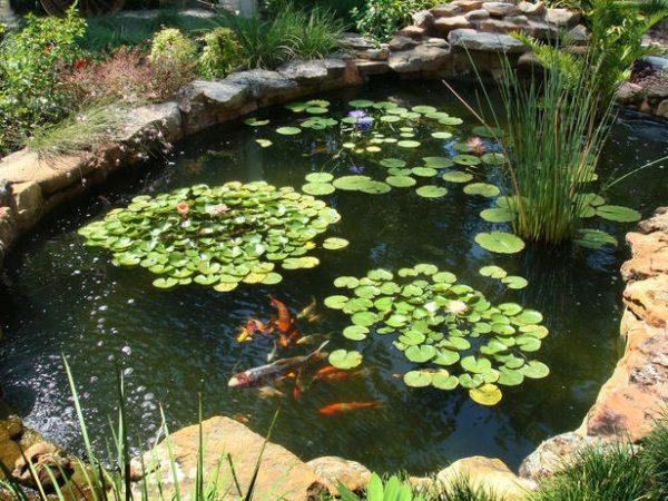 gartenteich anlegen attraktiver wassergarten – jilabainfosys, Gartengestaltung