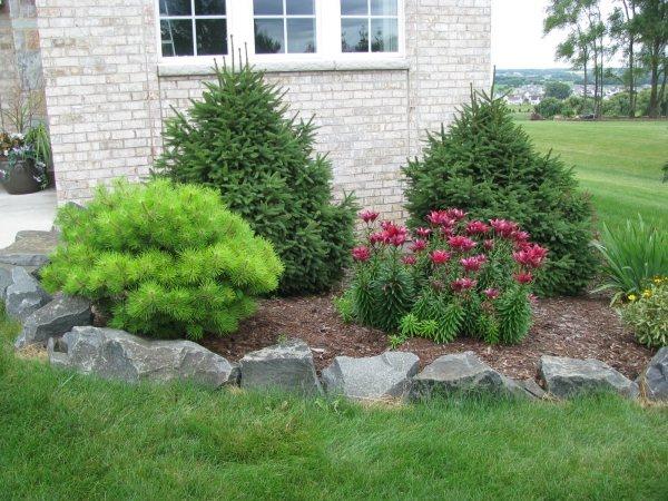 vorgarten gestaltung landschaftsbau wuestengarten pflanzen steine,
