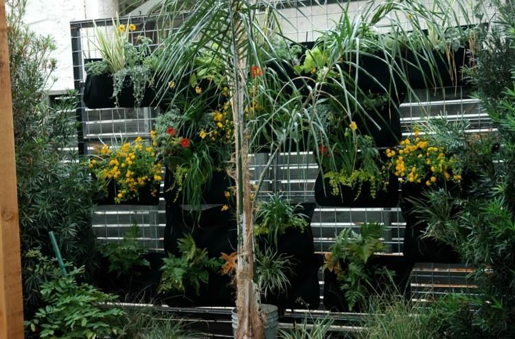 balkon sichtschutz mit vertikalem garten gunstig effektiv, Gartengerate ideen