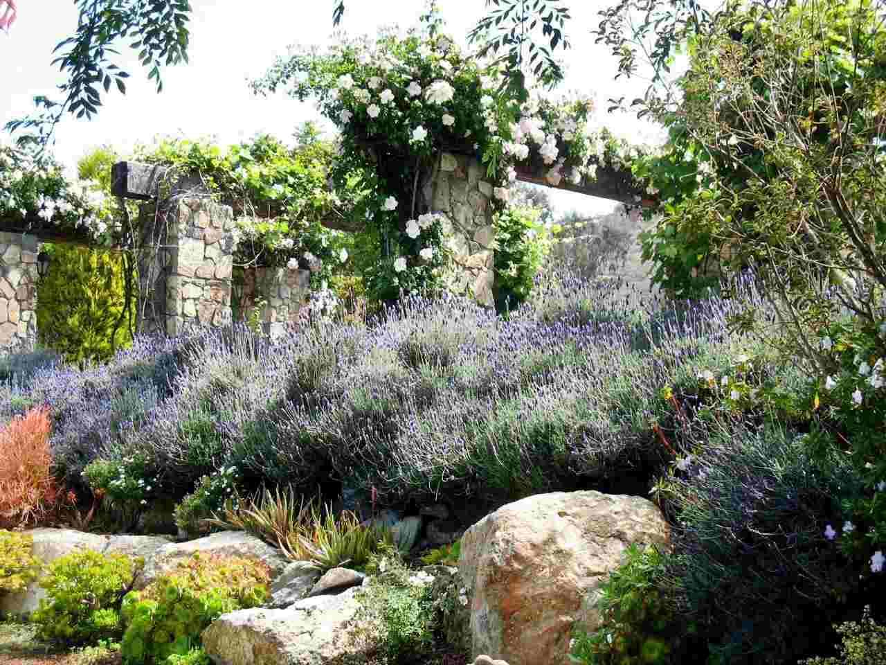Gartengestaltung Landhaus Bild 5 Landhaus Garten Form Farbe Jpg