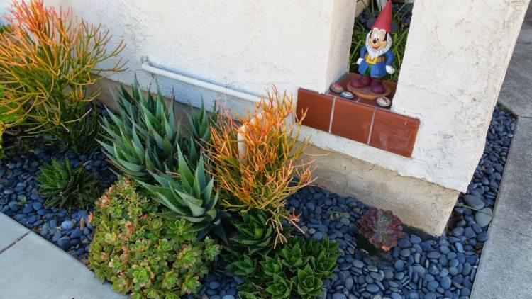 Vorgarten Gestaltung Landschaftsbau Wuestengarten Pflanzen Steine Kies Gartendeko