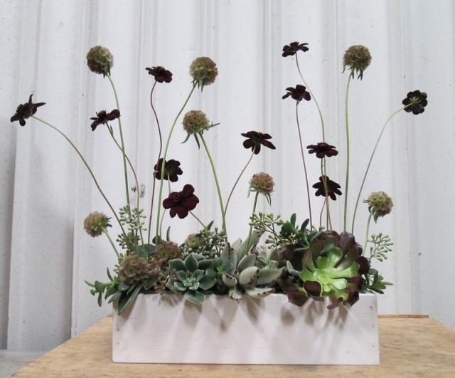 Blumen arrangieren wie ein Profi  Blumengestecke von Dandelion Ranch