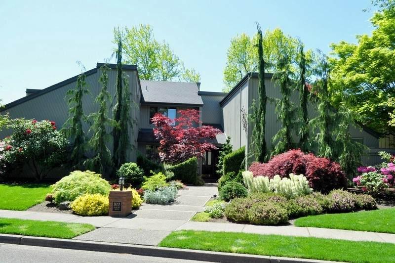 Gartengestaltung Ideen Die Top 10 Bäume Für Kleine Gärten
