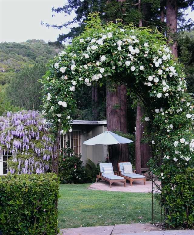 gartengestaltung pflege pergola pergola bepflanzen kletterpflanzen, Gartengerate ideen