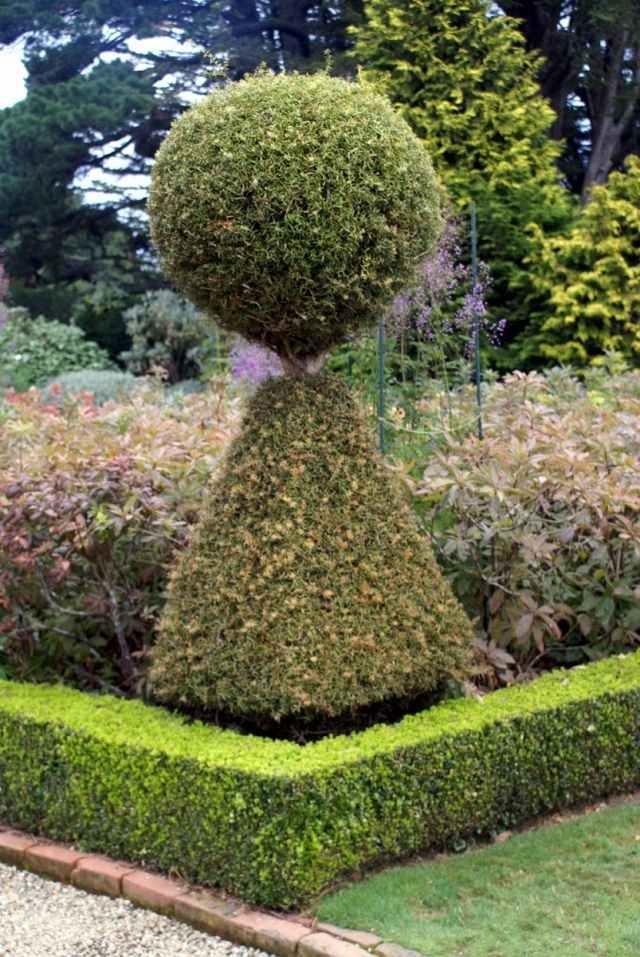 ideen f r gartengestaltung im fr hling buchsbaum schneiden deavita, Garten und erstellen
