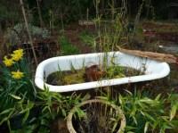 Wasserspiele im Garten  Gestaltung von Wasseroasen
