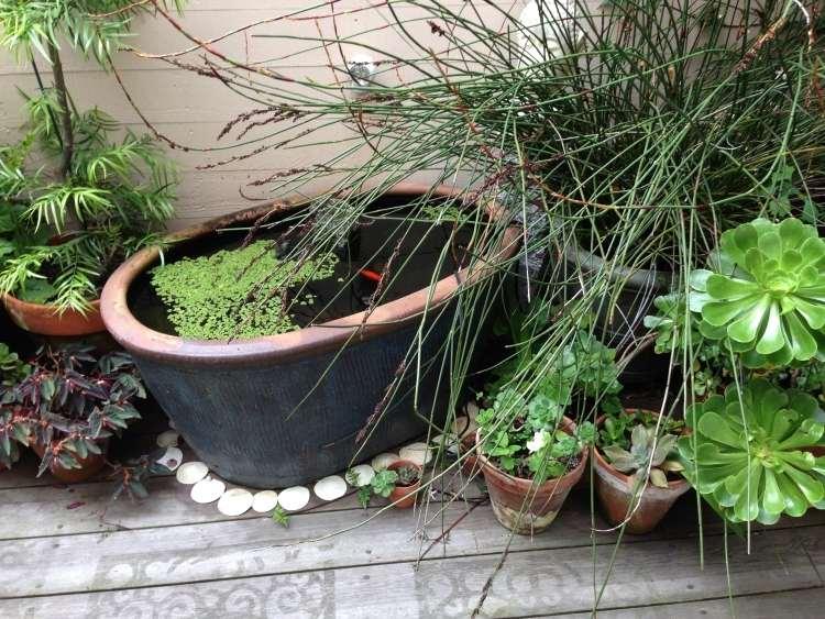 gartengestaltung pflege balkon miniteich anlegen eine kleine oase, Gartengerate ideen