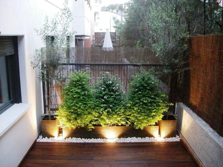 sichtschutz fur balkon bambusmatten gehoelze olivenbaume weisser kies bodenleuchten