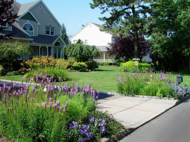 vorgarten ideen gestaltung mit pflanzen blumen zierrasen pflegen, Garten und erstellen