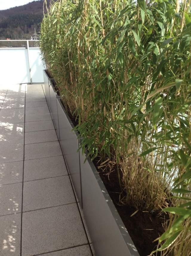 pflanzkuebel aus faserzement gruener sichtschutz fuer balkone, Gartengerate ideen