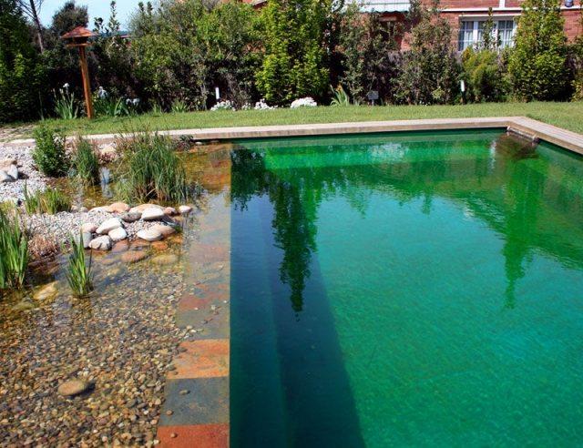 biologischer pool bauen schwimmteich im garten modern kies wasser, Garten und erstellen
