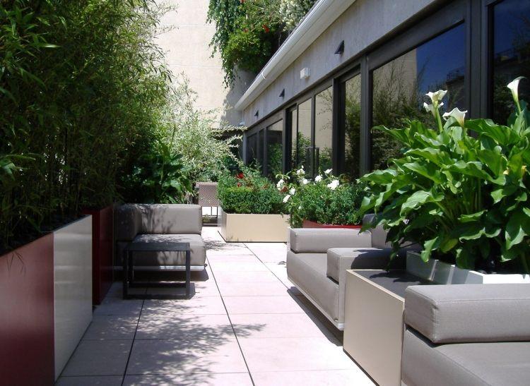 schnellwachsender sichtschutz terrasse balkon sichtschutz. Black Bedroom Furniture Sets. Home Design Ideas