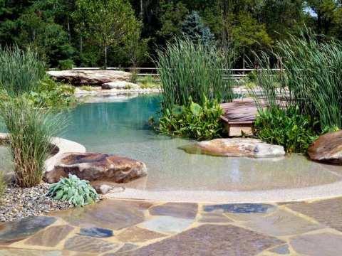 gartengestaltung natürlich der ökologische schwimmteich im garten - natürliche