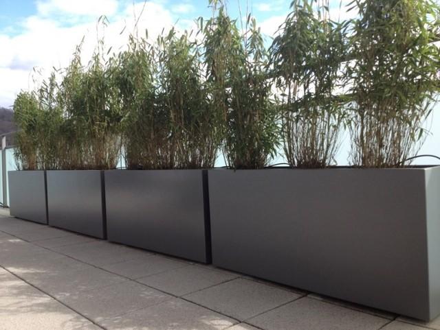sichtschutz pflanzkubel - meuble garten, Gartengerate ideen
