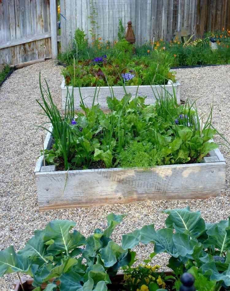 Hochbeet Bauen Ideen Für Platzsparende Gartengestaltung Tipps Und Ideen Zum  Kleingarten Gestalten Was Sollte ...