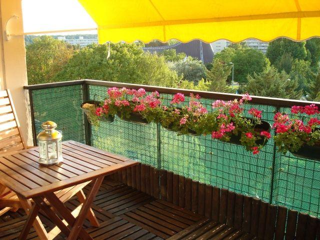 Balkonpflanzen je nach Balkonausrichtung whlen  richtig pflegen