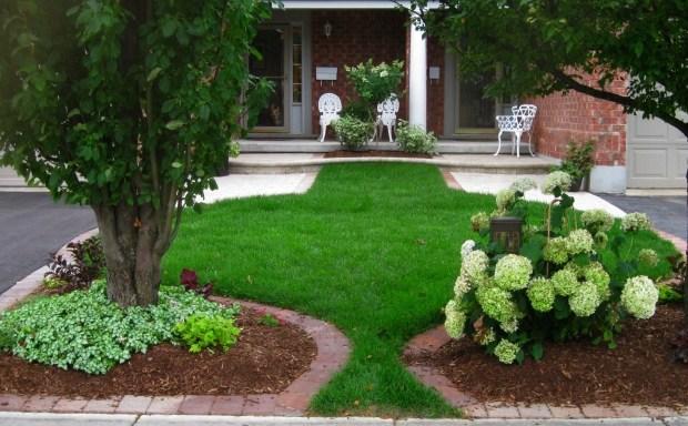 zierrasen ideen fur vorgarten gestaltung offen ohne zaun | mojekop, Garten und erstellen