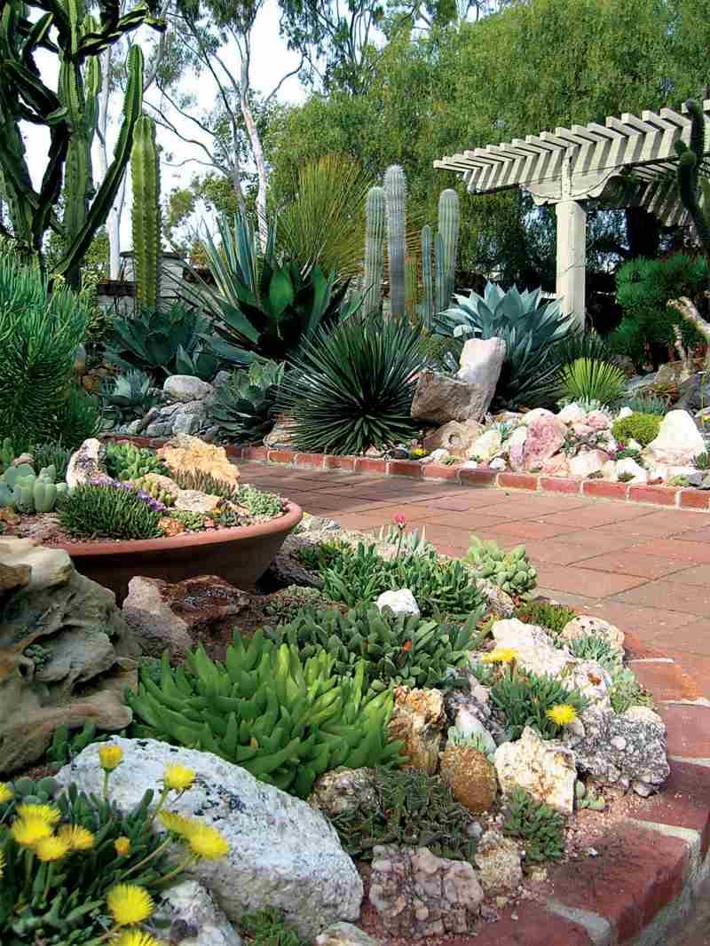 s gartengestaltung pflege landschaftsbau sukkulenten im garten, Landschaftsbau